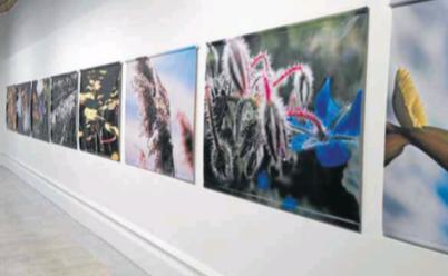 Inauguració de l'exposició «Les quatre estacions» de Josep Borrell, l'any 2012