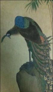 Fig.18, Reproducció en grabat a color de Peacock, l'original per Soken Yamaguchi